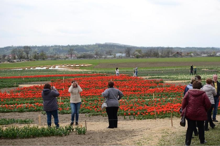 2020 12 14 104532 История семьи, которая 15 лет назад начала цветочный бизнес
