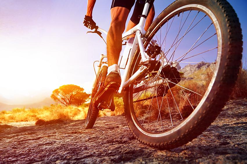 Mountain Bike Beginners Guide Что нужно знать при выборе велосипеда: типы и особенности байков